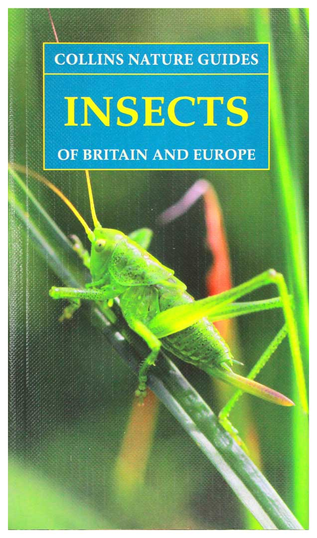 Insects guide