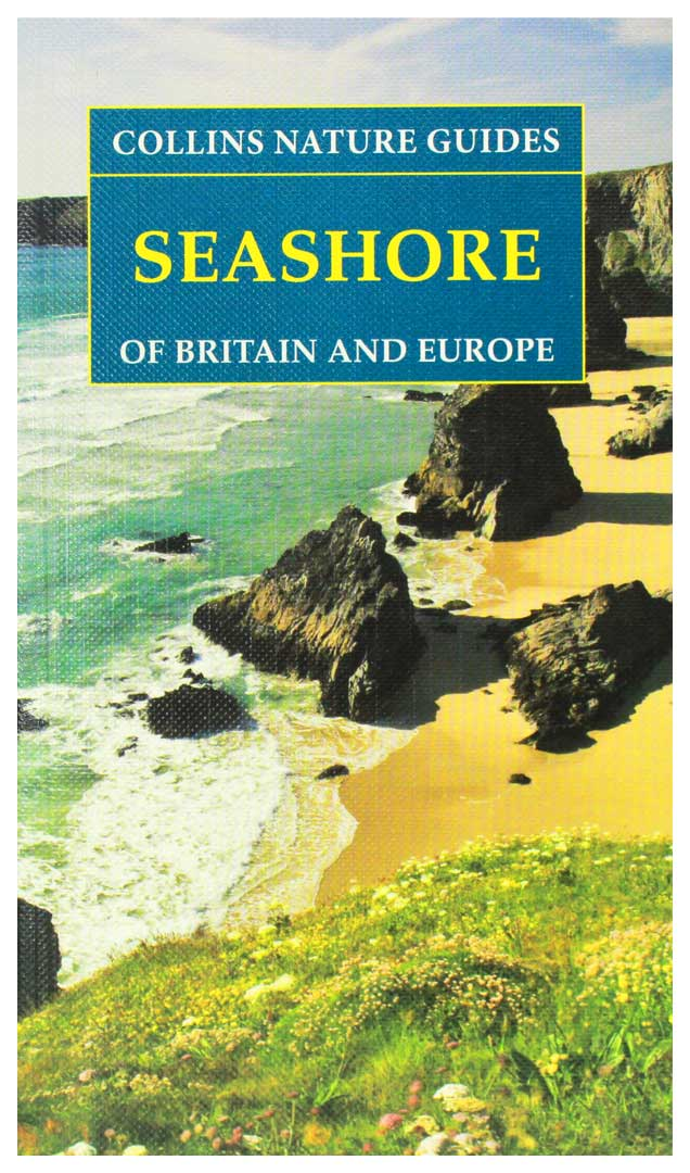 an examination of the seashore as a habitat Start studying biology exam 4 high biodiversity where there are enough resources to subdivide habitats what are some of the challenges faced in the seashore.