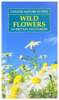 Wild flowers guide