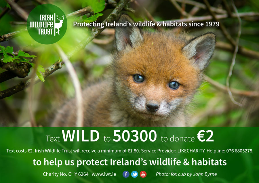 Text WILD to 50300 to donate €2 to IWT