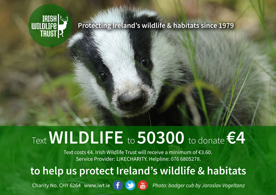 Text WILDLIFE to 50300 to donate €4 to IWT