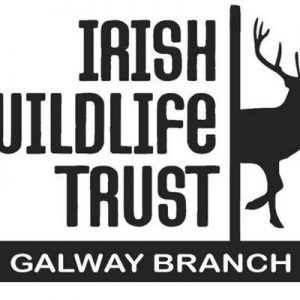 IWTG AGM Friday April 12th - Galway