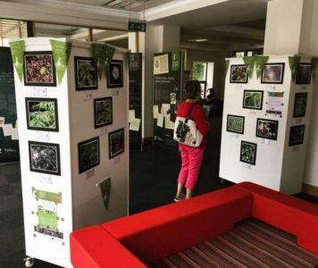 Children's Nature photo exhibition